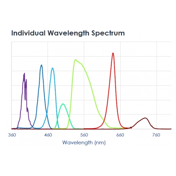 Fuente LED multicanal 7+1 canales - Fluorescencia