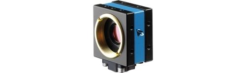 USB 2.0 color cameras