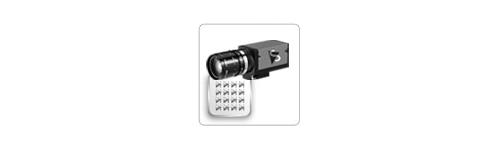 Firewire mono cameras