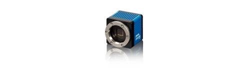 Scientific sCMOS cameras