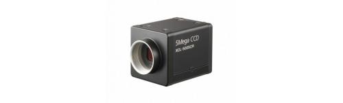 Camera Link cameras